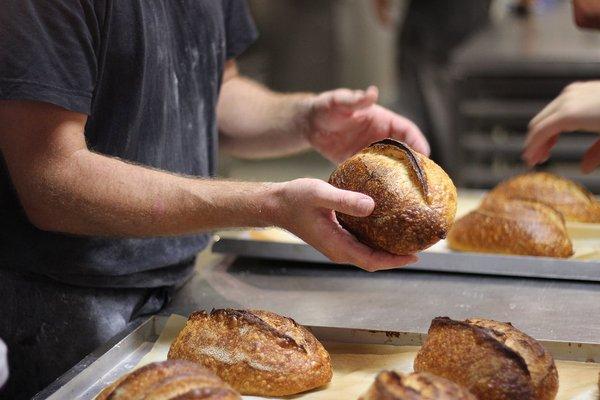 bourke-street-bakery-2