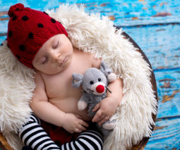 Newborn baby photo shoot in basket - feature