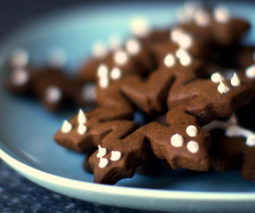 Spicy gingerbread cookies - feature