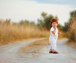 Redhead toddler boy standing in field - feature