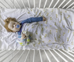 Toddler asleep in cot with dummy and teddy - feature