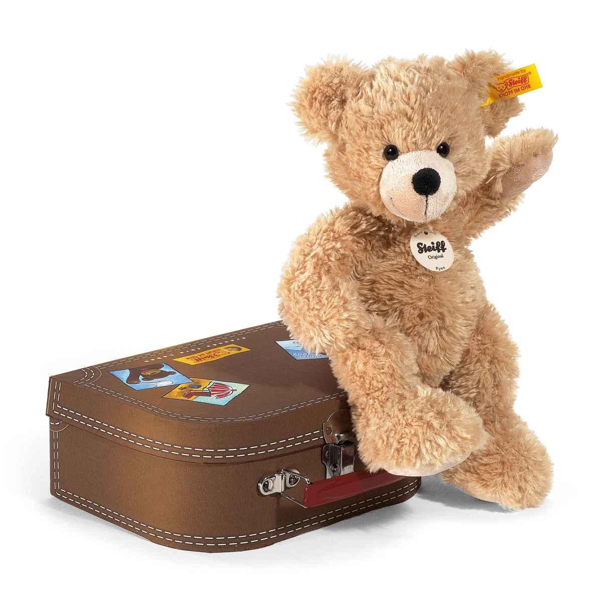 Fynn Teddy bear in suitcase