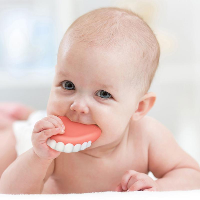 False teeth teething toy