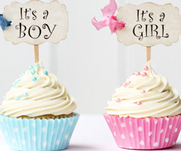 Gender cupcakes thumbnail