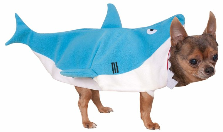 Doggy Shark costume