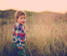 Toddler boy standing in long grass in twilight feature