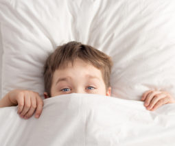 Young boy under blankets in bed feature
