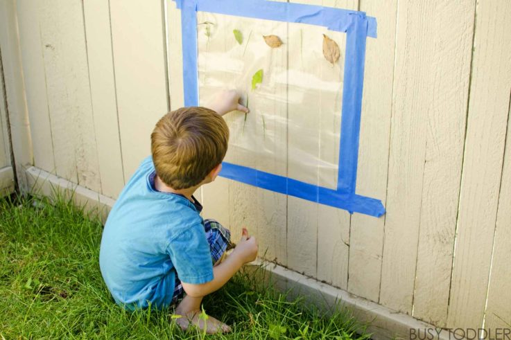 Sticky wall activity