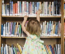 climbing bookshelf feature